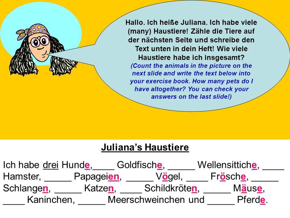 Hallo. Ich heiße Juliana. Ich habe viele (many) Haustiere! Zähle die Tiere auf der nächsten Seite und schreibe den Text unten in dein Heft! Wie viele