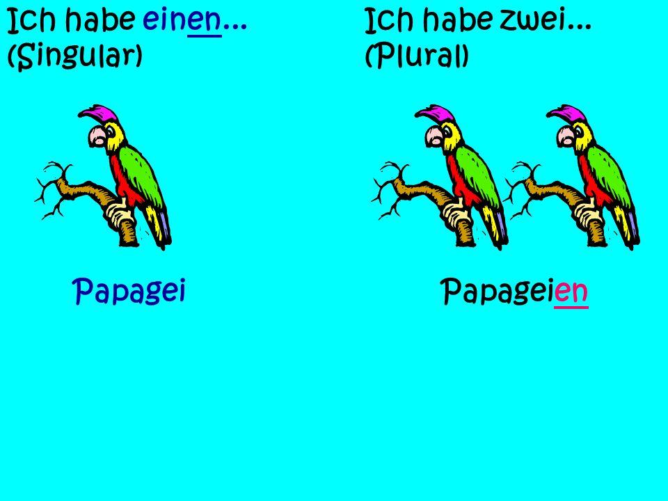 Ich habe einen... (Singular) Ich habe zwei... (Plural) VogelVögel FroschFrösche