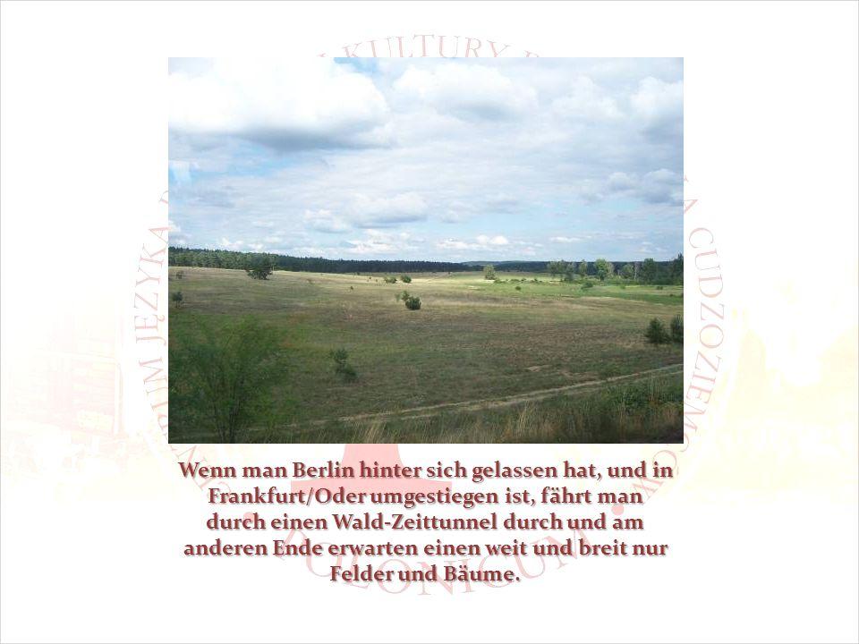 Wenn man Berlin hinter sich gelassen hat, und in Frankfurt/Oder umgestiegen ist, fährt man durch einen Wald-Zeittunnel durch und am anderen Ende erwarten einen weit und breit nur Felder und Bäume.