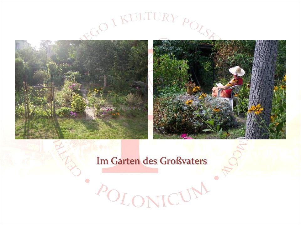 Im Garten des Großvaters