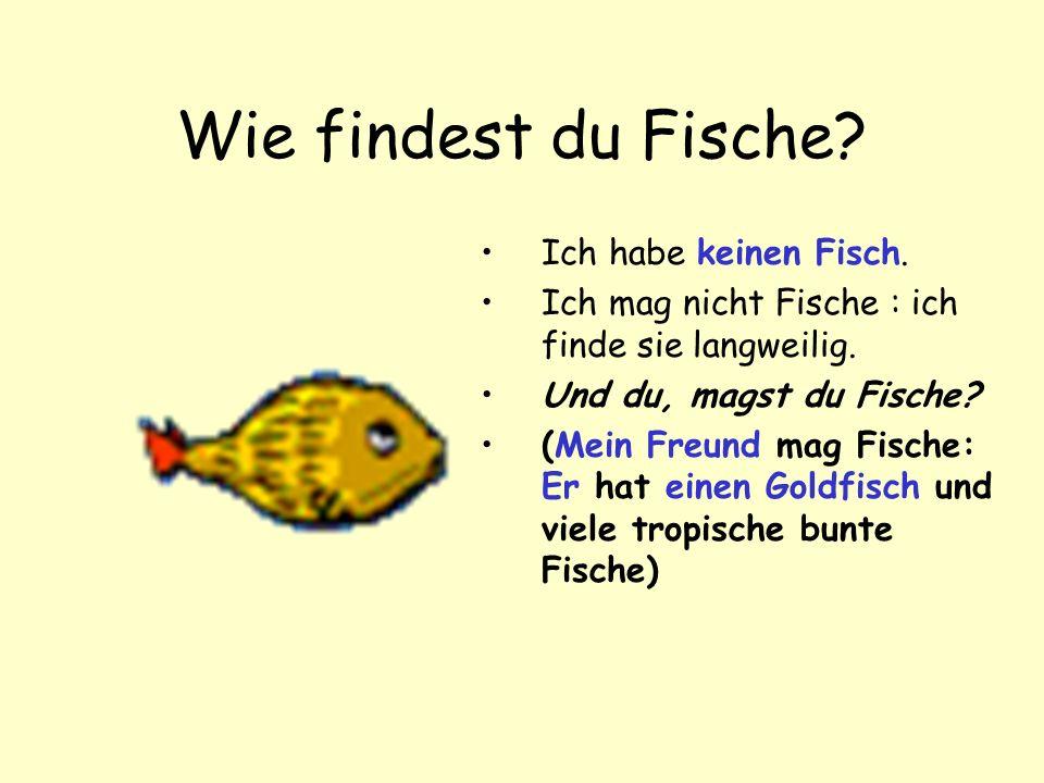 Wie findest du Fische.Ich habe keinen Fisch. Ich mag nicht Fische : ich finde sie langweilig.