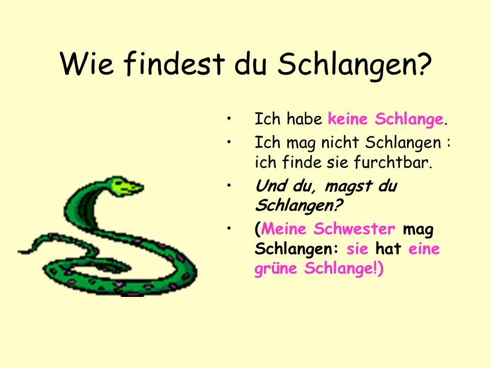 Wie findest du Schlangen.Ich habe keine Schlange.