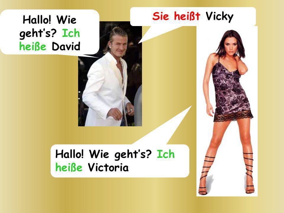 Hallo! Wie gehts? Ich heiße David Sie heißt Vicky Hallo! Wie gehts? Ich heiße Victoria