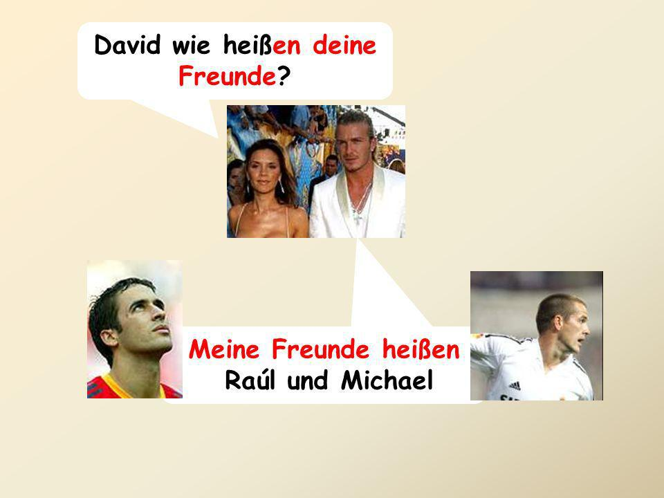 David wie heißen deine Freunde? Meine Freunde heißen Raúl und Michael