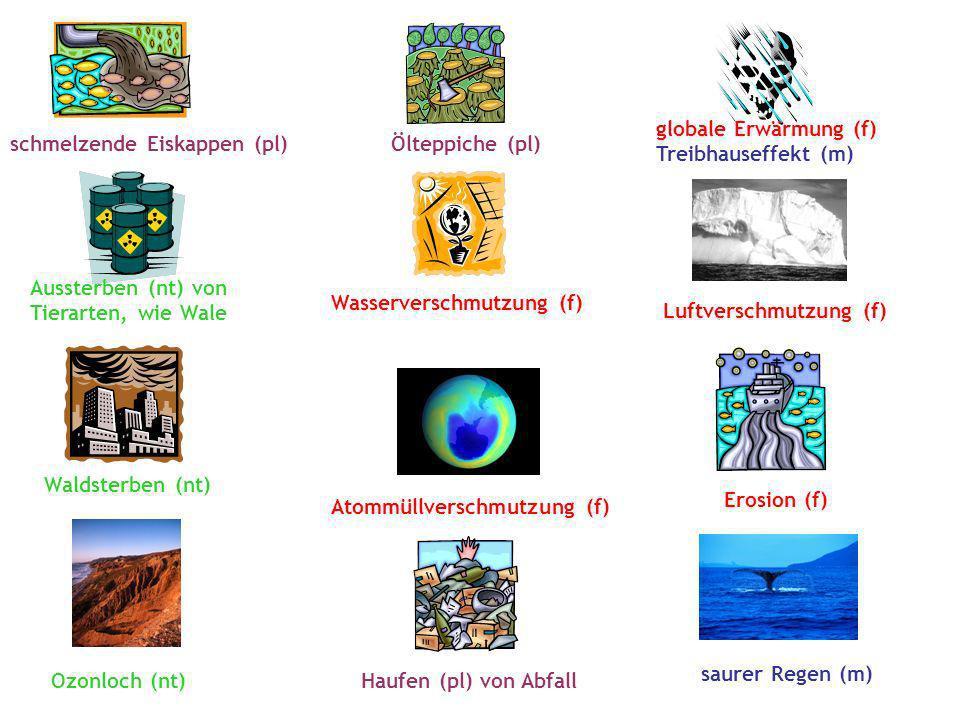 Wasserverschmutzung (f) Atommüllverschmutzung (f) Luftverschmutzung (f) Erosion (f) Waldsterben (nt) globale Erwärmung (f) Treibhauseffekt (m) Ozonloch (nt) Haufen (pl) von Abfall saurer Regen (m) schmelzende Eiskappen (pl) Ölteppiche (pl) Aussterben (nt) von Tierarten, wie Wale