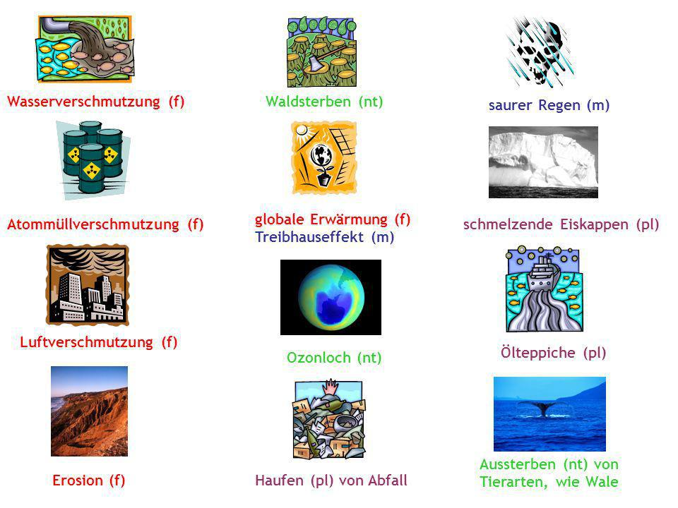 Wasserverschmutzung (f) Atommüllverschmutzung (f) Luftverschmutzung (f) Erosion (f) Waldsterben (nt) globale Erwärmung (f) Treibhauseffekt (m) Ozonloc