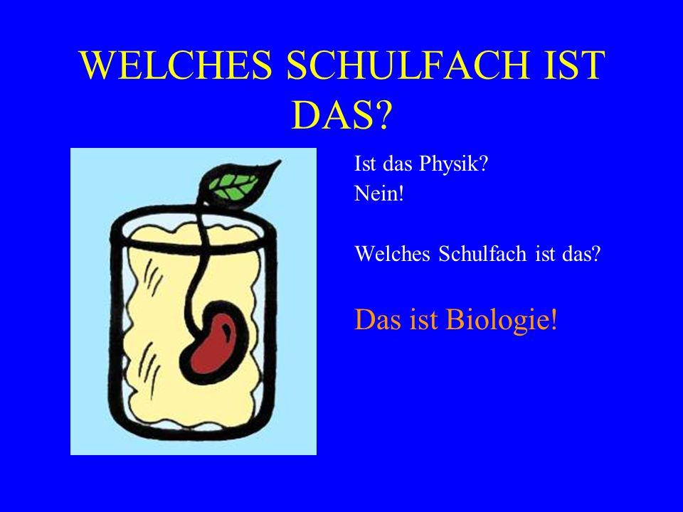 WELCHES SCHULFACH IST DAS? Ist das Physik? Nein! Welches Schulfach ist das? Das ist Biologie!