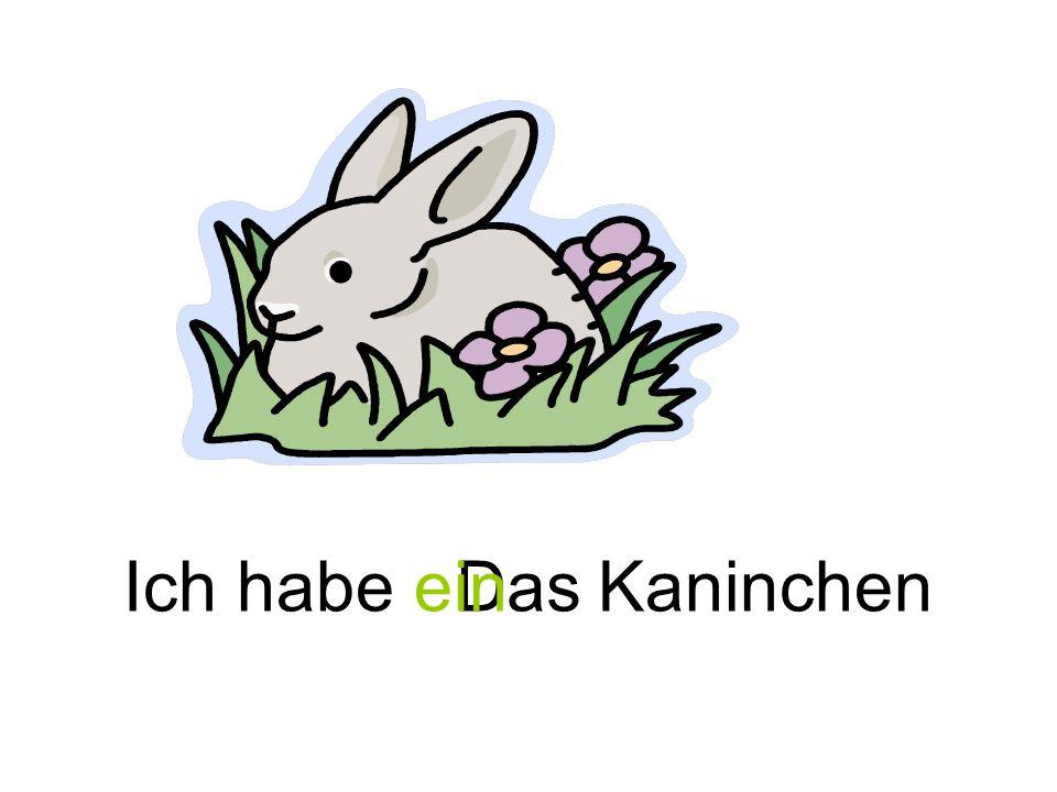 KaninchenDasIch habe ein