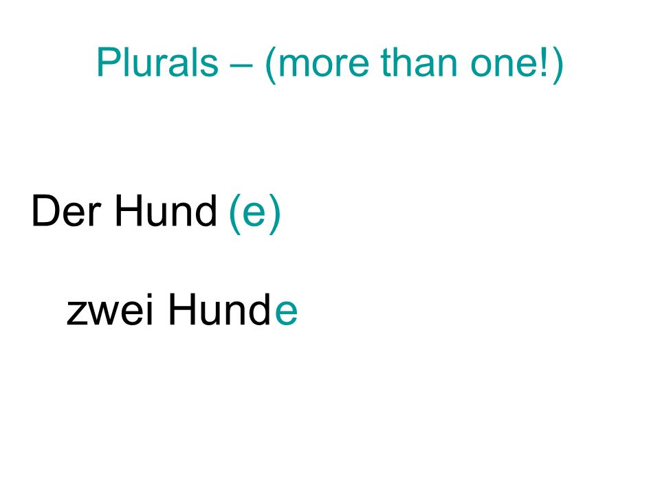 Plurals – (more than one!) Der Hund(e) zwei Hunde