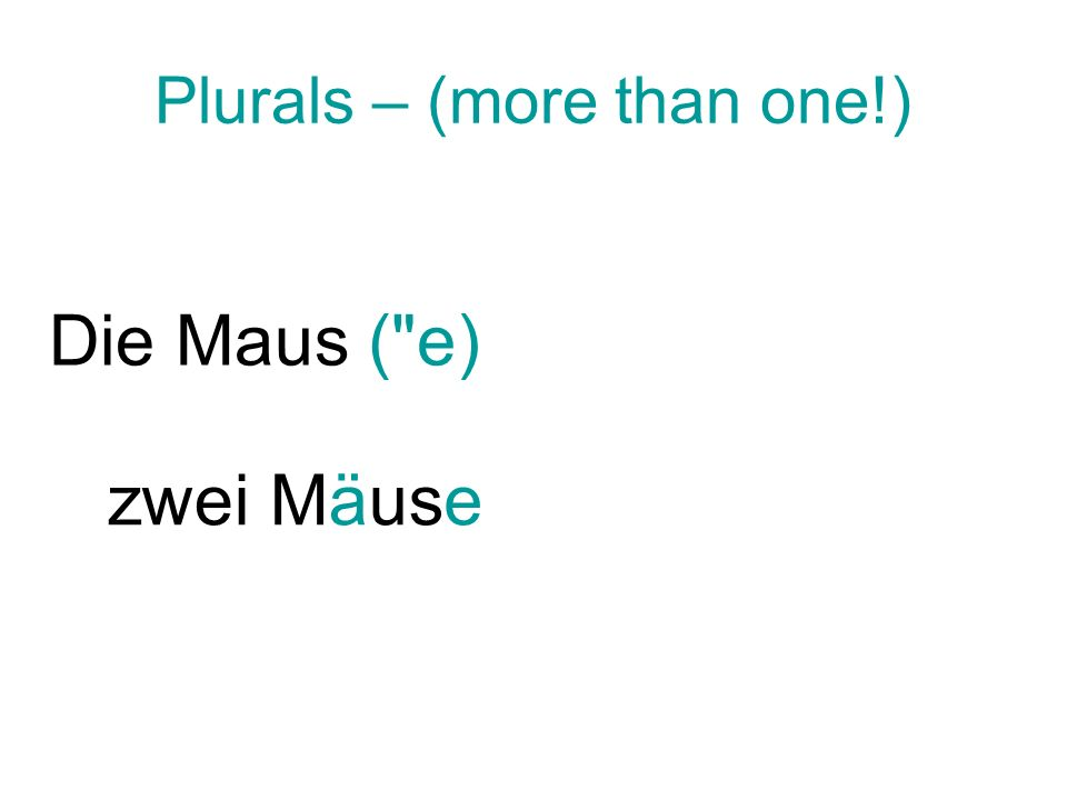 Plurals – (more than one!) Die Maus(