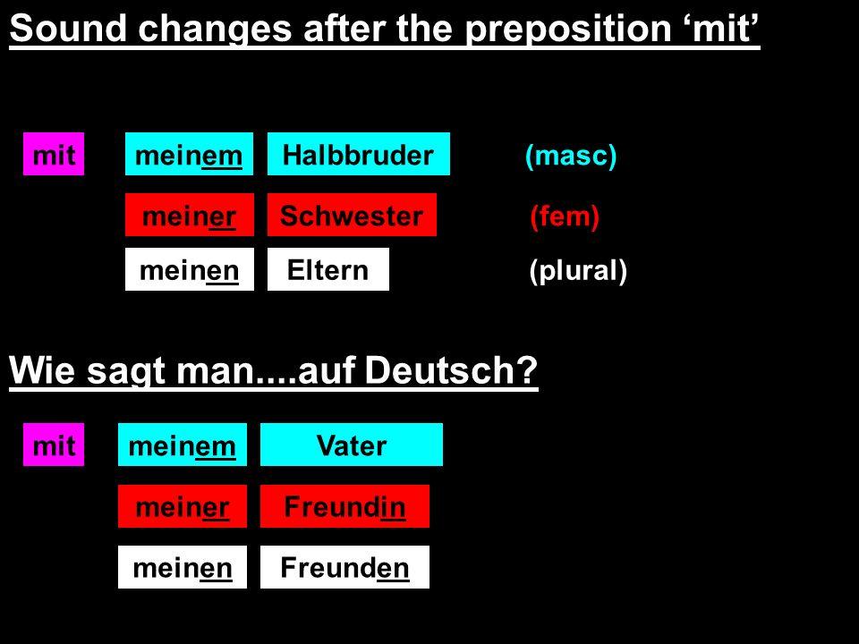 mit Sound changes after the preposition mit meinenEltern meinemHalbbruder meinerSchwester Wie sagt man....auf Deutsch.