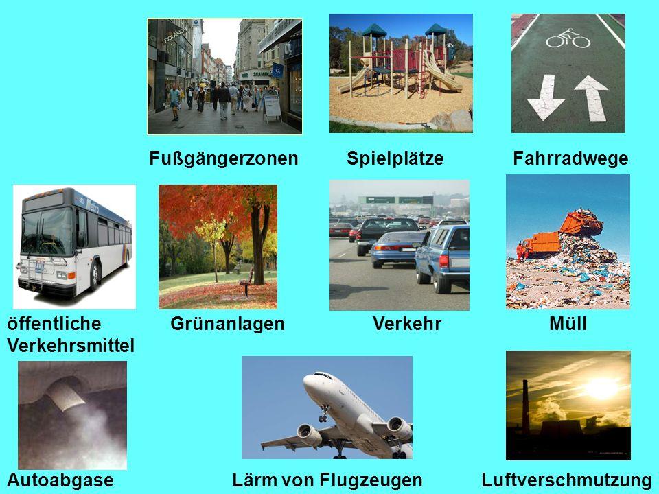 FußgängerzonenSpielplätzeFahrradwege Lärm von Flugzeugen GrünanlagenVerkehrMüll Autoabgase öffentliche Verkehrsmittel Luftverschmutzung