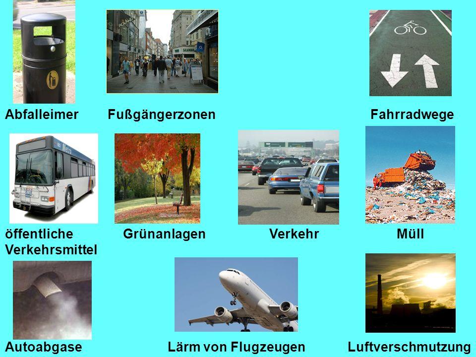 FußgängerzonenFahrradwege Lärm von Flugzeugen GrünanlagenVerkehrMüll Autoabgase öffentliche Verkehrsmittel Luftverschmutzung