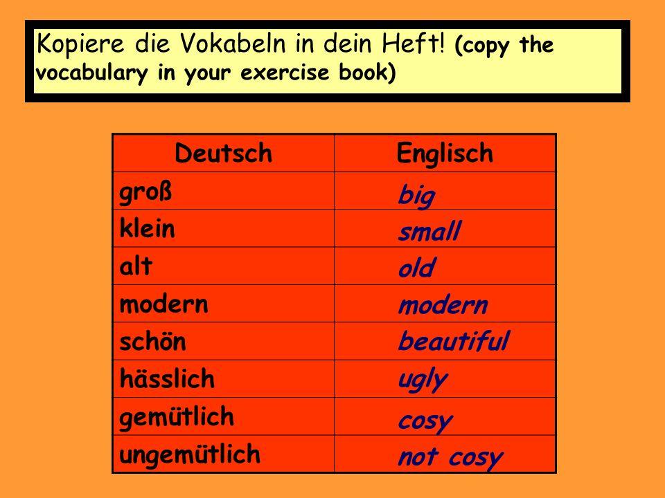 Kopiere die Vokabeln in dein Heft.