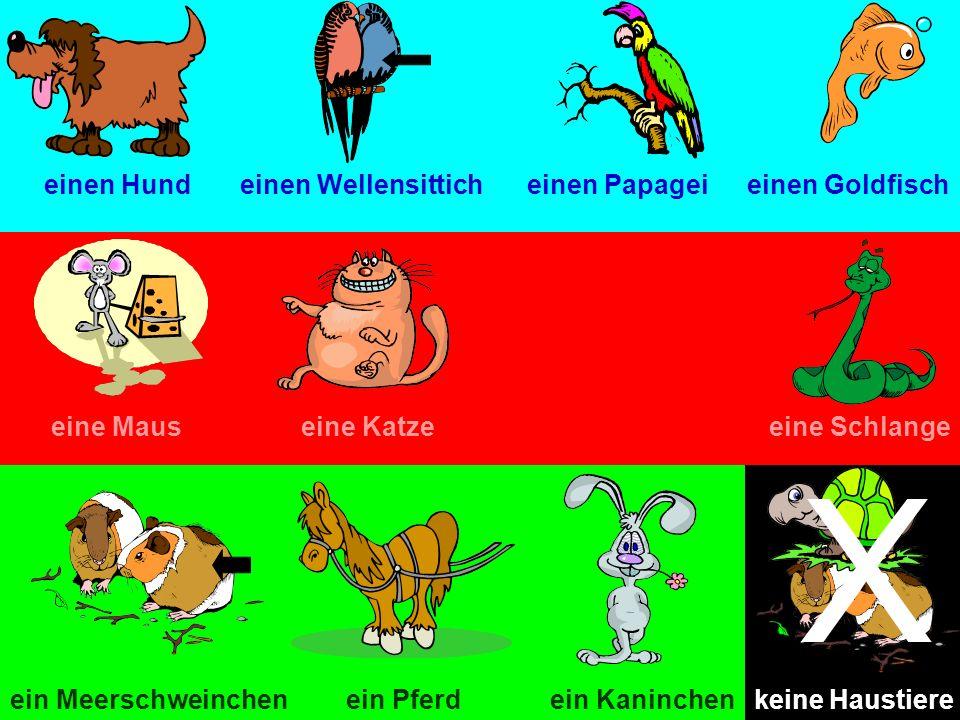 einen Hundeinen Wellensitticheinen Papageieinen Goldfisch eine Mauseine Katzeeine Schlange ein Pferdein Meerschweinchenein Kaninchen X keine Haustiere