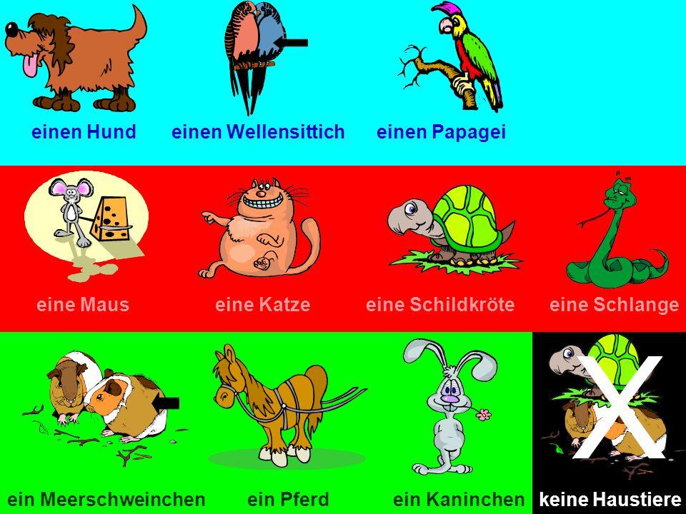 einen Hundeinen Wellensitticheinen Papagei eine Mauseine Katzeeine Schildkröteeine Schlange ein Pferdein Meerschweinchenein Kaninchen X keine Haustier