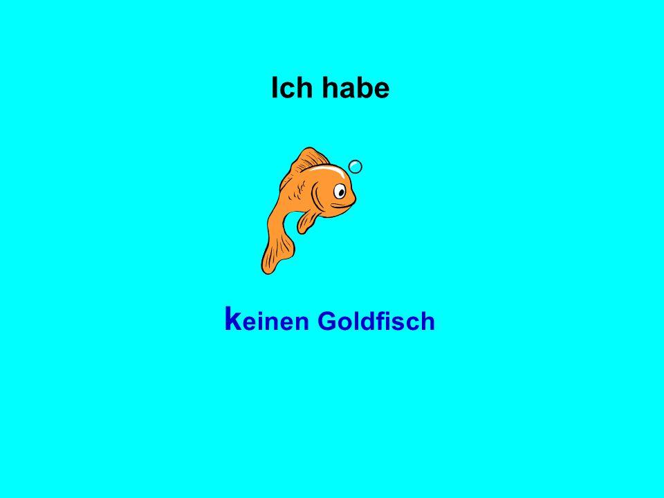 k einen Goldfisch Ich habe