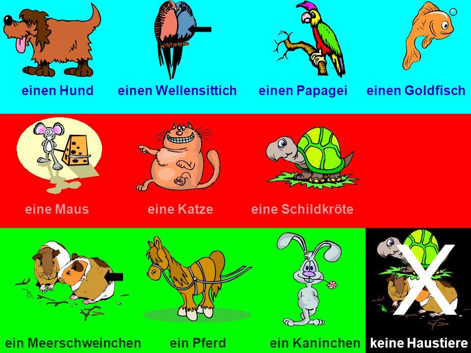 einen Hundeinen Wellensitticheinen Papageieinen Goldfisch eine Mauseine Katzeeine Schildkröte ein Pferdein Meerschweinchenein Kaninchen X keine Hausti