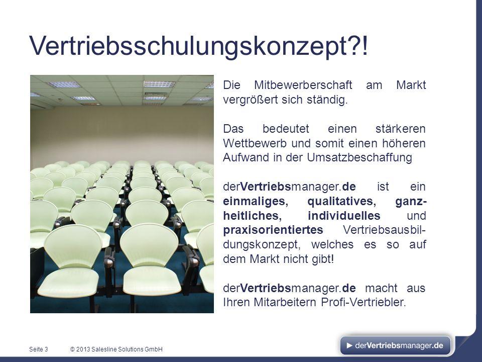 © 2013 Salesline Solutions GmbH Vertriebsschulungskonzept?! Seite 3 Die Mitbewerberschaft am Markt vergrößert sich ständig. Das bedeutet einen stärker