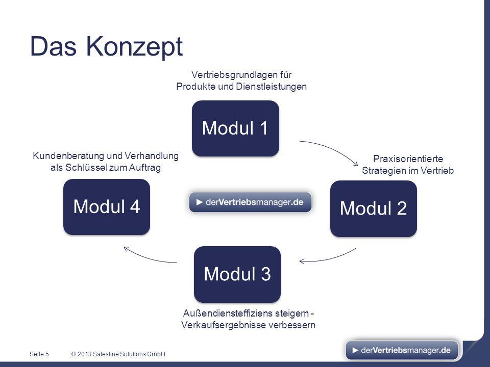 © 2013 Salesline Solutions GmbH Modul 1Modul 2Modul 3Modul 4 Seite 5 Vertriebsgrundlagen für Produkte und Dienstleistungen Praxisorientierte Strategie