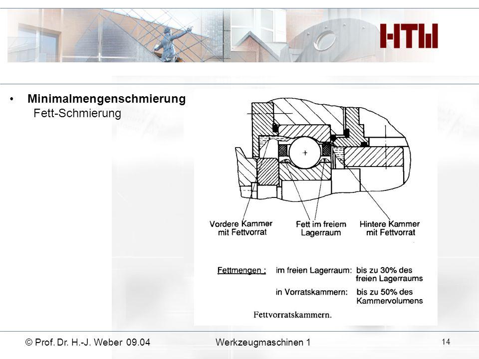 Minimalmengenschmierung Fett-Schmierung © Prof. Dr. H.-J. Weber 09.04Werkzeugmaschinen 1 14