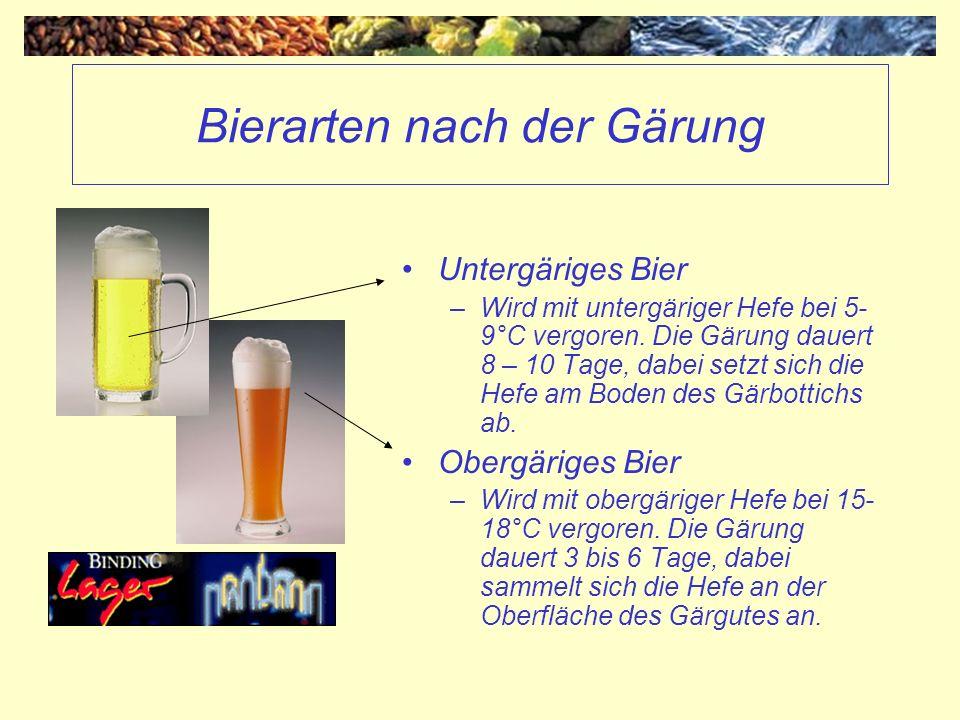 Bierarten nach der Gärung Untergäriges Bier –Wird mit untergäriger Hefe bei 5- 9°C vergoren. Die Gärung dauert 8 – 10 Tage, dabei setzt sich die Hefe