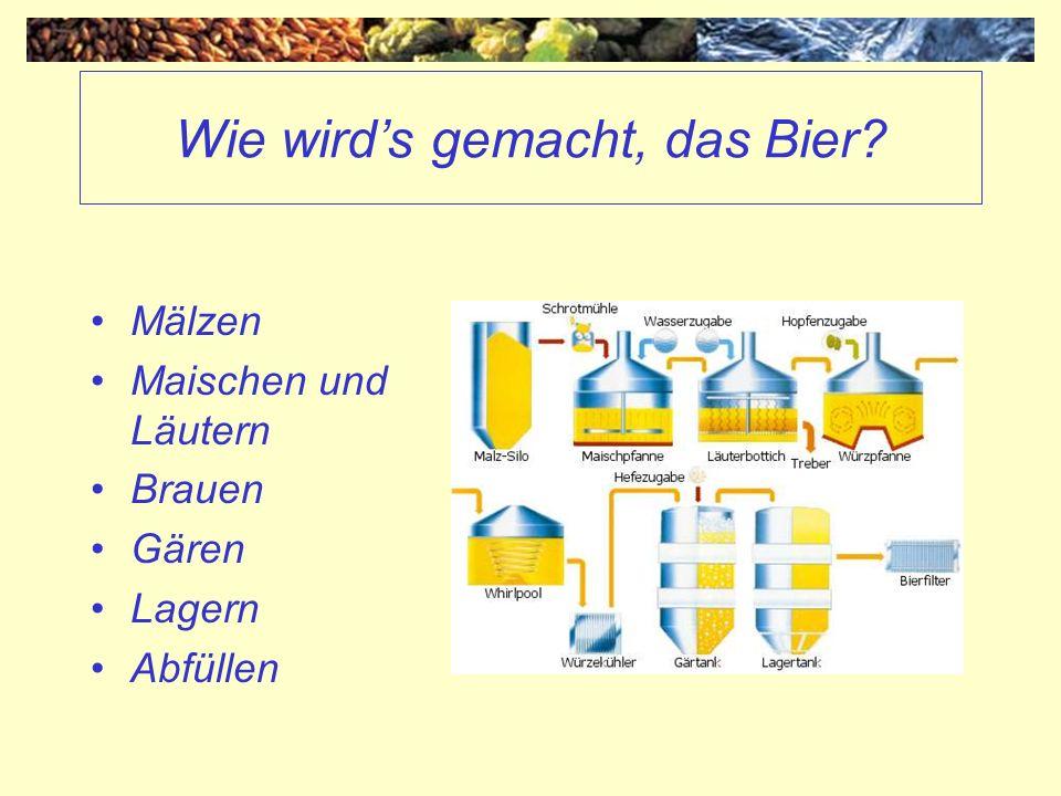 Wie wirds gemacht, das Bier? Mälzen Maischen und Läutern Brauen Gären Lagern Abfüllen