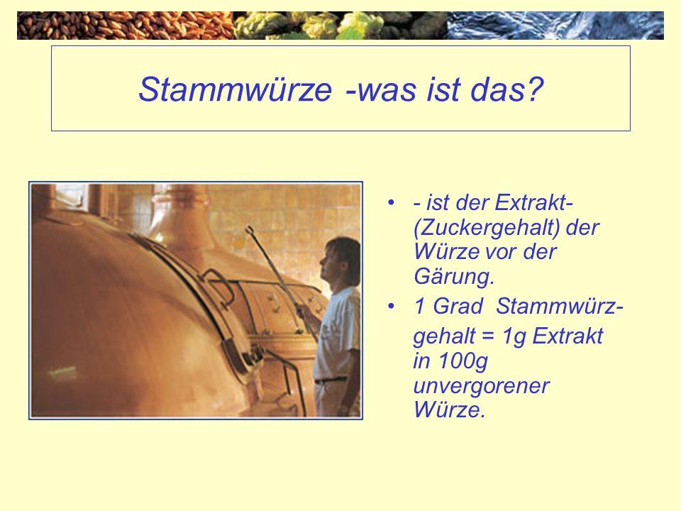 Stammwürze -was ist das? - ist der Extrakt- (Zuckergehalt) der Würze vor der Gärung. 1 Grad Stammwürz- gehalt = 1g Extrakt in 100g unvergorener Würze.