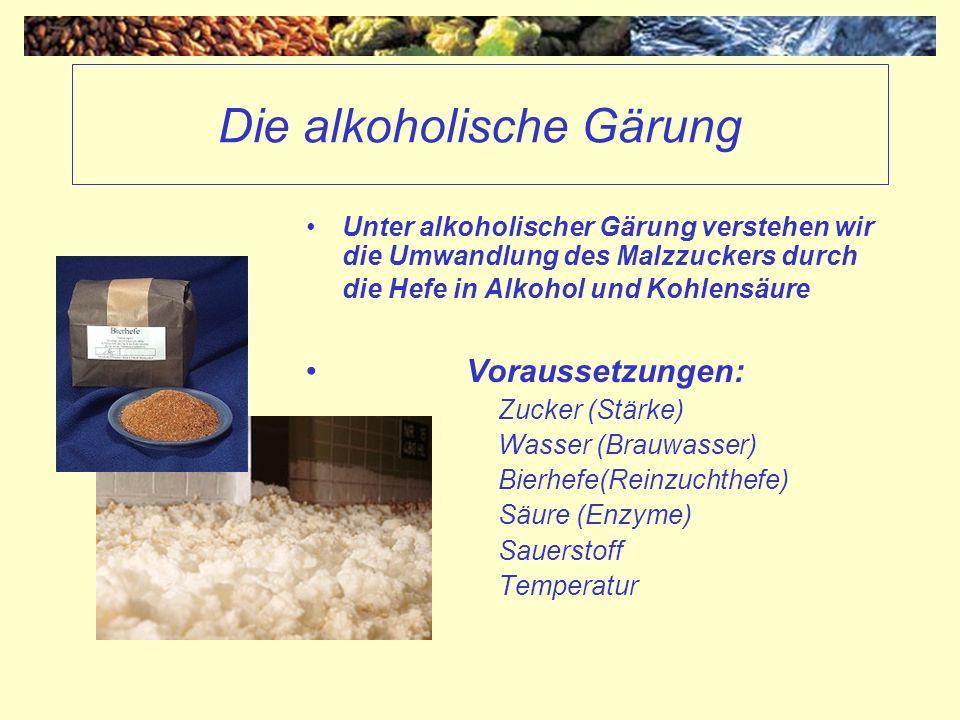 Die alkoholische Gärung Unter alkoholischer Gärung verstehen wir die Umwandlung des Malzzuckers durch die Hefe in Alkohol und Kohlensäure Voraussetzun