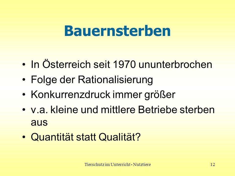 Tierschutz im Unterricht - Nutztiere12 Bauernsterben In Österreich seit 1970 ununterbrochen Folge der Rationalisierung Konkurrenzdruck immer größer v.a.