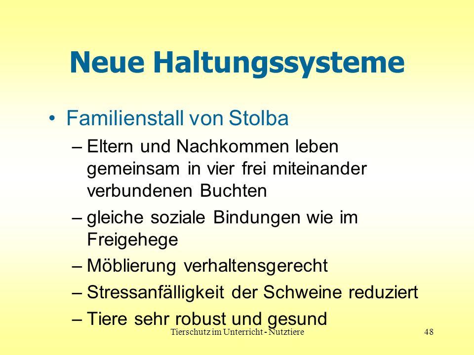 Tierschutz im Unterricht - Nutztiere48 Neue Haltungssysteme Familienstall von Stolba –Eltern und Nachkommen leben gemeinsam in vier frei miteinander v