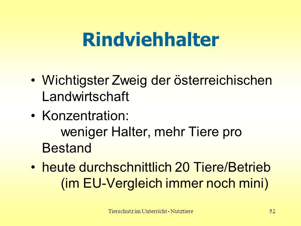 Tierschutz im Unterricht - Nutztiere52 Rindviehhalter Wichtigster Zweig der österreichischen Landwirtschaft Konzentration: weniger Halter, mehr Tiere pro Bestand heute durchschnittlich 20 Tiere/Betrieb (im EU-Vergleich immer noch mini)