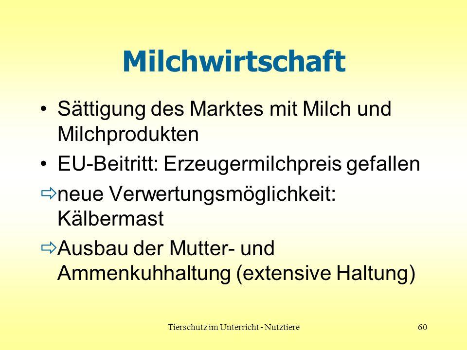 Tierschutz im Unterricht - Nutztiere60 Milchwirtschaft Sättigung des Marktes mit Milch und Milchprodukten EU-Beitritt: Erzeugermilchpreis gefallen neu