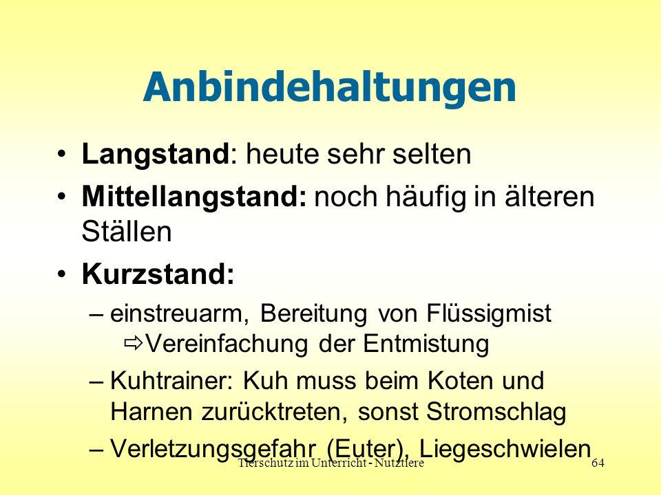 Tierschutz im Unterricht - Nutztiere64 Anbindehaltungen Langstand: heute sehr selten Mittellangstand: noch häufig in älteren Ställen Kurzstand: –einst
