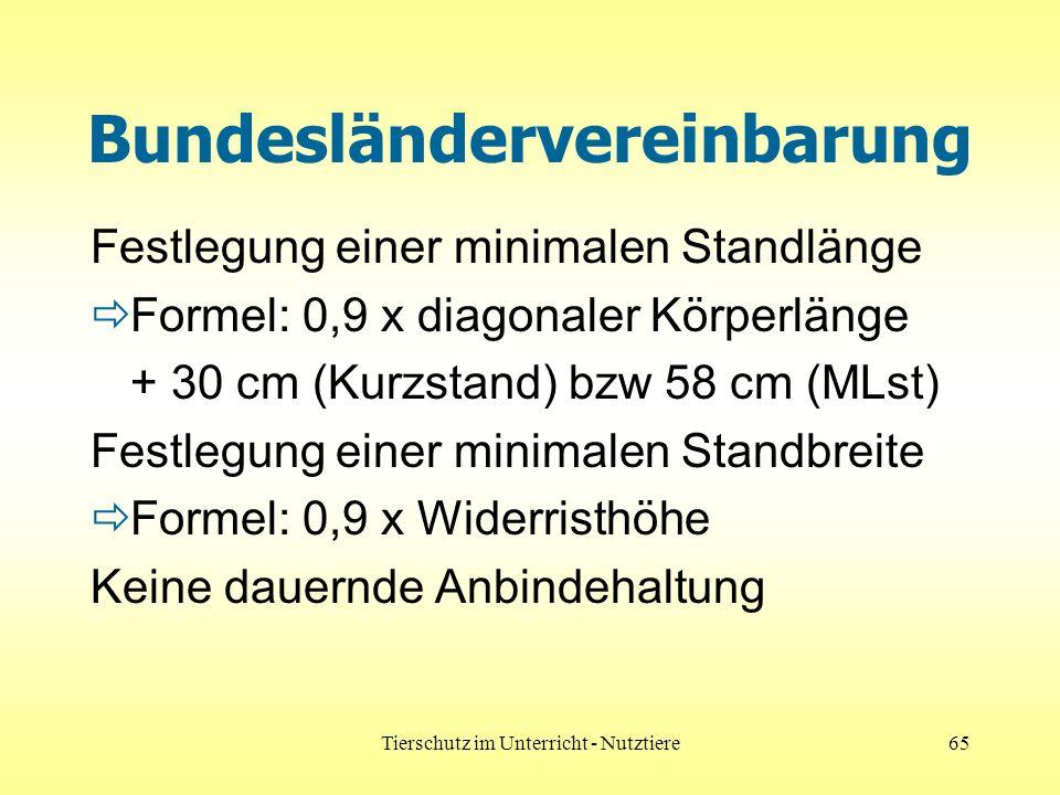 Tierschutz im Unterricht - Nutztiere65 Bundesländervereinbarung Festlegung einer minimalen Standlänge Formel: 0,9 x diagonaler Körperlänge + 30 cm (Kurzstand) bzw 58 cm (MLst) Festlegung einer minimalen Standbreite Formel: 0,9 x Widerristhöhe Keine dauernde Anbindehaltung