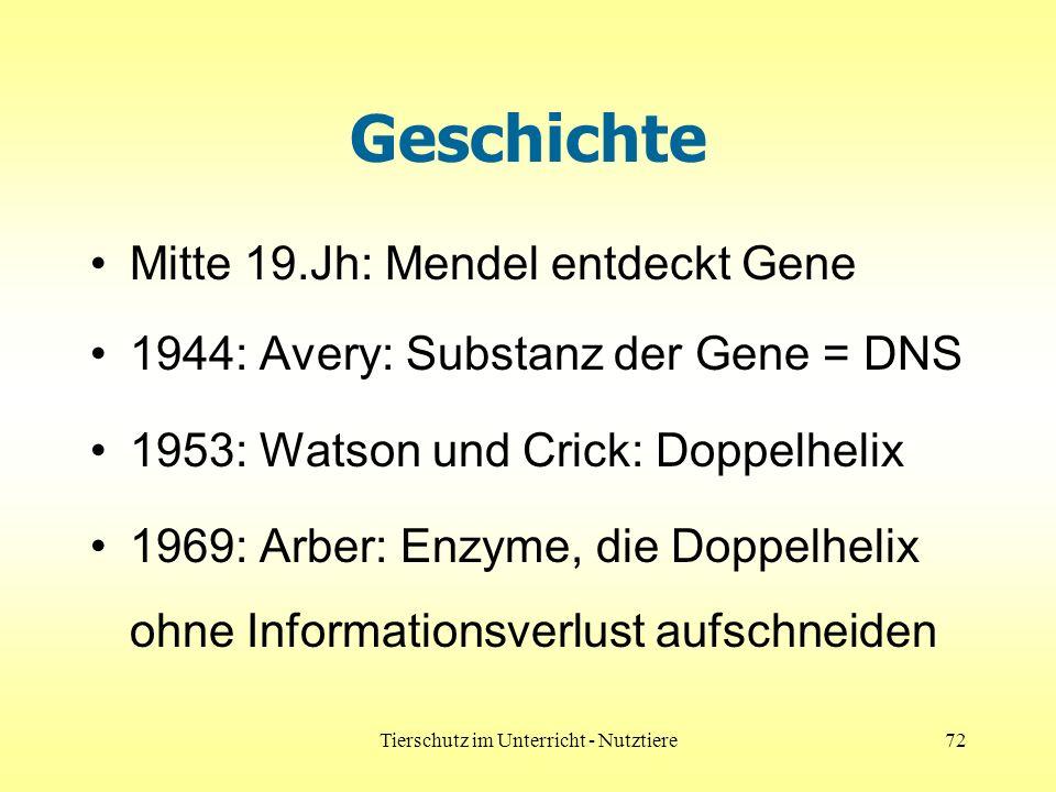 Tierschutz im Unterricht - Nutztiere72 Geschichte Mitte 19.Jh: Mendel entdeckt Gene 1944: Avery: Substanz der Gene = DNS 1953: Watson und Crick: Doppelhelix 1969: Arber: Enzyme, die Doppelhelix ohne Informationsverlust aufschneiden