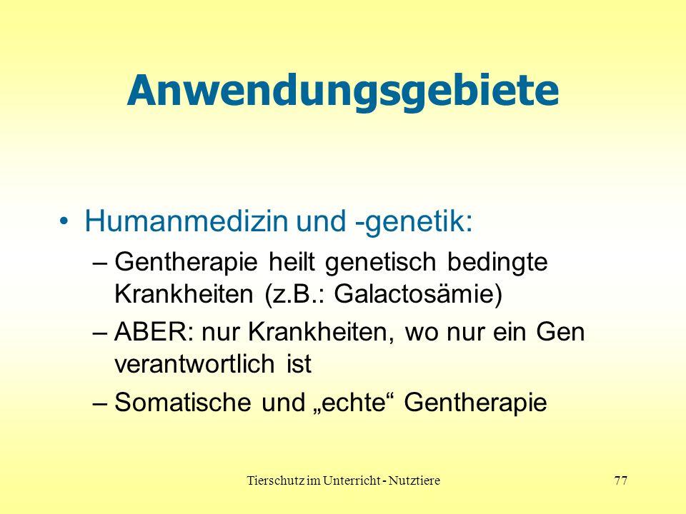 Tierschutz im Unterricht - Nutztiere77 Anwendungsgebiete Humanmedizin und -genetik: –Gentherapie heilt genetisch bedingte Krankheiten (z.B.: Galactosämie) –ABER: nur Krankheiten, wo nur ein Gen verantwortlich ist –Somatische und echte Gentherapie
