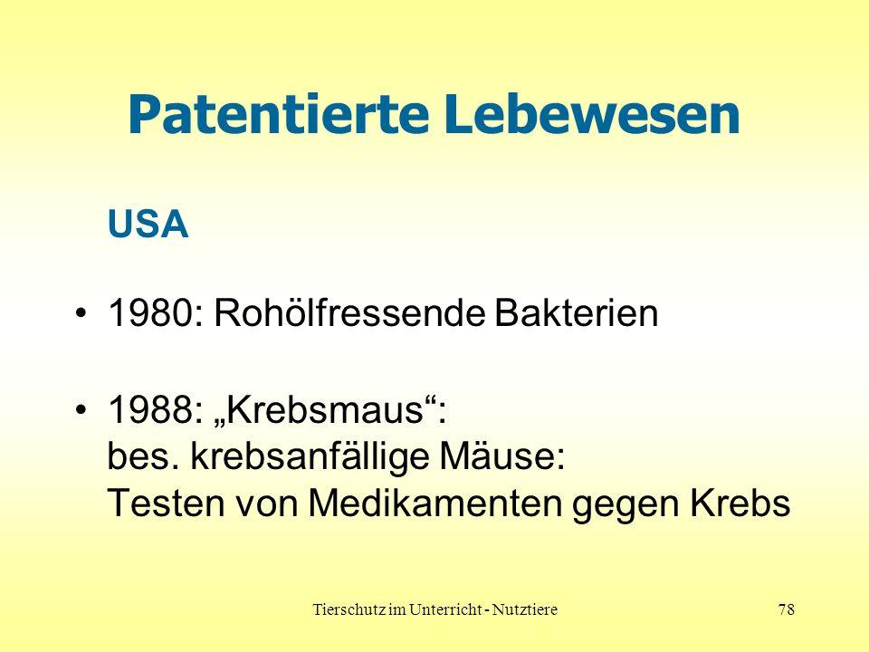 Tierschutz im Unterricht - Nutztiere78 Patentierte Lebewesen USA 1980: Rohölfressende Bakterien 1988: Krebsmaus: bes. krebsanfällige Mäuse: Testen von