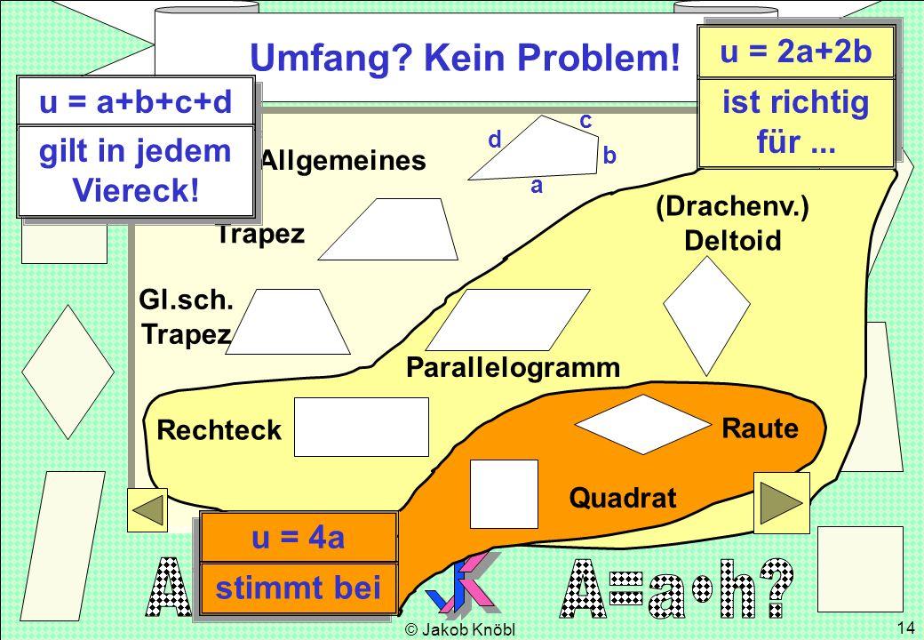© Jakob Knöbl 14 Allgemeines Trapez Gl.sch. Trapez (Drachenv.) Deltoid Parallelogramm Rechteck Raute Quadrat Umfang? Kein Problem! a b c d u = a+b+c+d