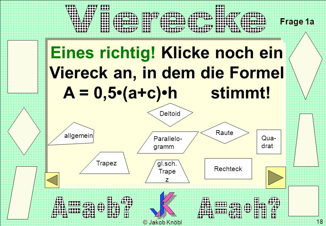 © Jakob Knöbl 18 Eines richtig! Klicke noch ein Viereck an, in dem die Formel A = 0,5(a+c)h stimmt! Frage 1a gl.sch. Trape z Parallelo- gramm Rechteck