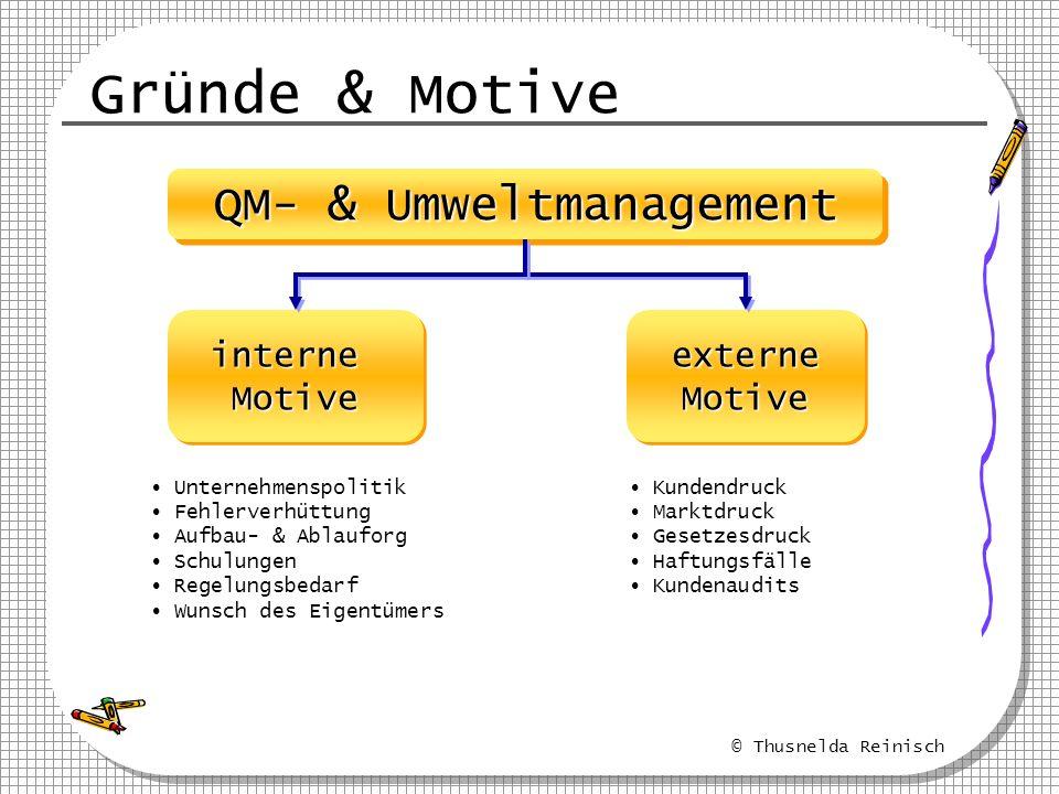 © Thusnelda Reinisch Gründe & Motive QM- & Umweltmanagement interneMotiveinterneMotiveexterneMotiveexterneMotive Unternehmenspolitik Fehlerverhüttung