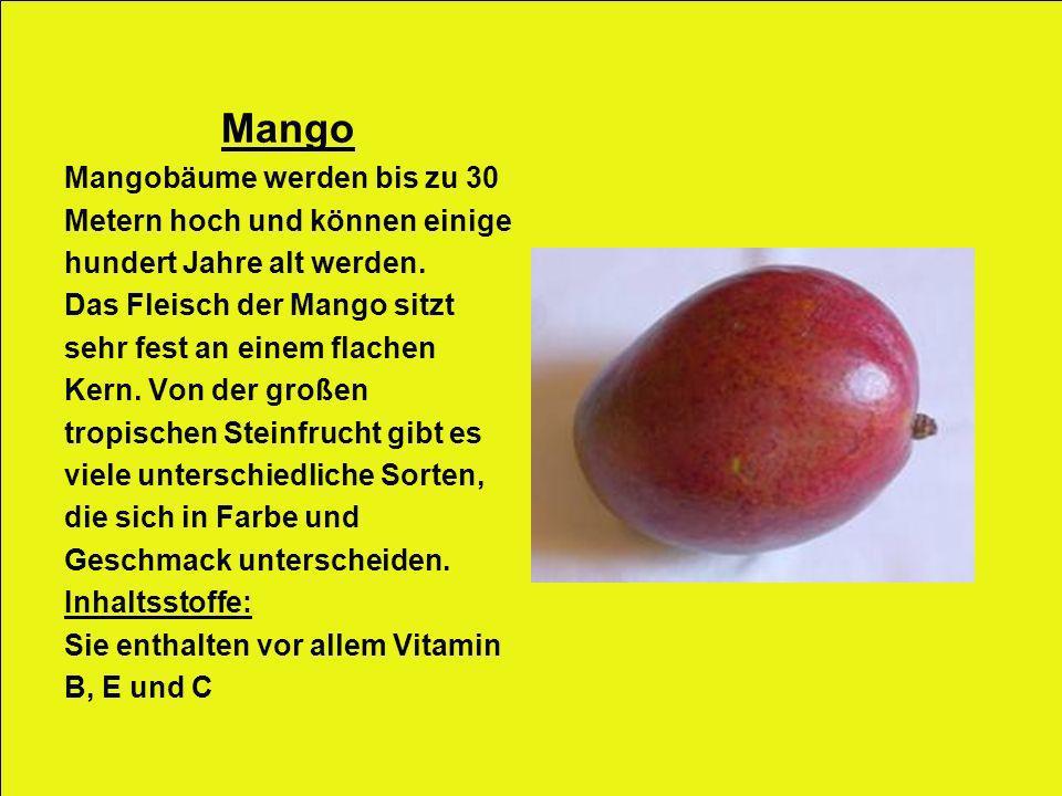 Mango Mangobäume werden bis zu 30 Metern hoch und können einige hundert Jahre alt werden. Das Fleisch der Mango sitzt sehr fest an einem flachen Kern.