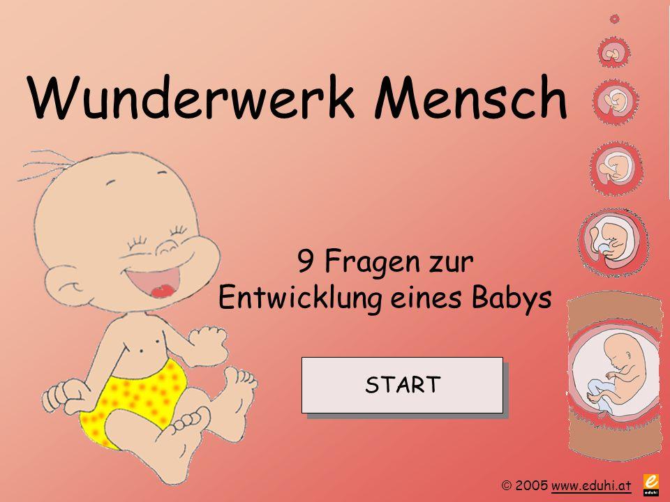 © 2005 www.eduhi.atwww.eduhi.at Wunderwerk Mensch 9 Fragen zur Entwicklung eines Babys START