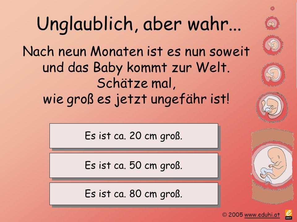 © 2005 www.eduhi.atwww.eduhi.at Unglaublich, aber wahr... Nach neun Monaten ist es nun soweit und das Baby kommt zur Welt. Schätze mal, wie groß es je