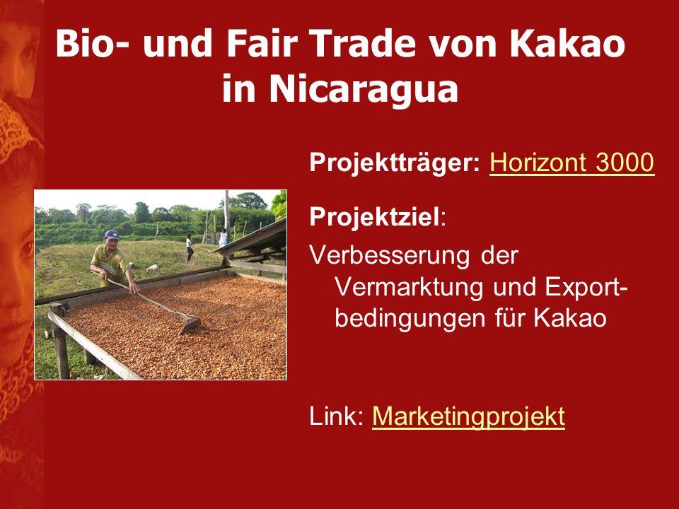 Bio- und Fair Trade von Kakao in Nicaragua Projektträger: Horizont 3000Horizont 3000 Projektziel: Verbesserung der Vermarktung und Export- bedingungen