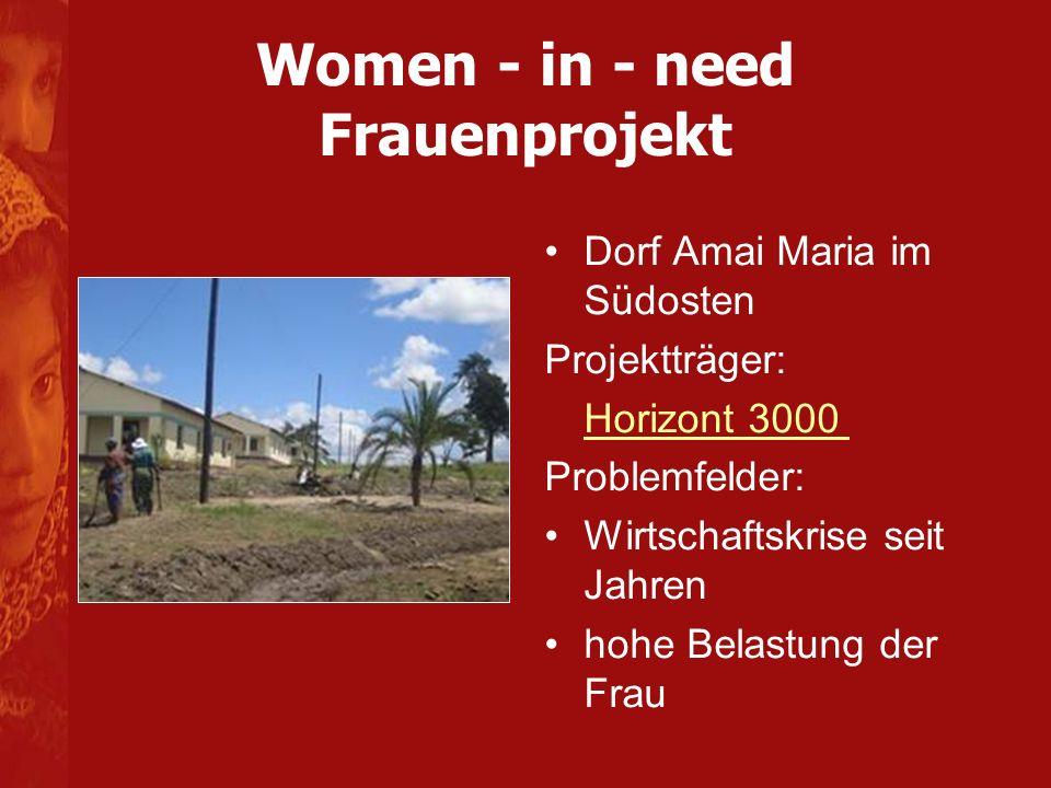 Women - in - need Frauenprojekt Dorf Amai Maria im Südosten Projektträger: Horizont 3000 Problemfelder: Wirtschaftskrise seit Jahren hohe Belastung der Frau