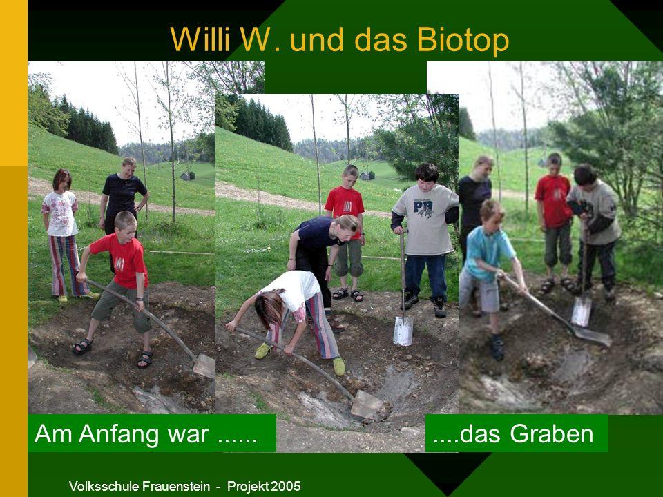 Volksschule Frauenstein - Projekt 2005 Willi W. und das Biotop Am Anfang war..........das Graben