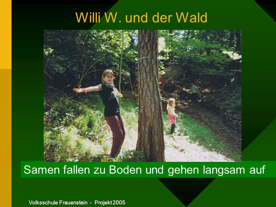 Volksschule Frauenstein - Projekt 2005 Willi W.