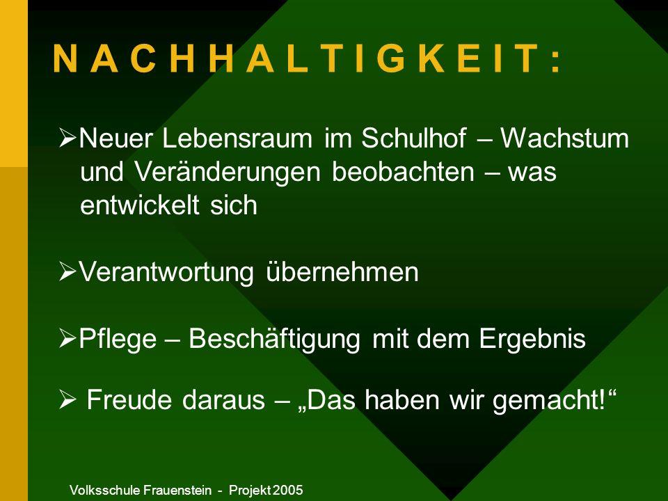 Volksschule Frauenstein - Projekt 2005 Das Projekt wird vorgestellt Ideen werden gesammelt Die Ideen werden aufgeschrieben