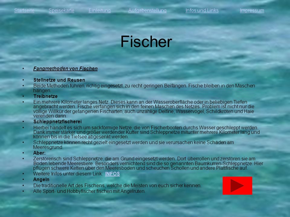 StartseiteEinleitungAufgabenstellungInfos und LinksImpressumSpeisekarte Fischer Fangmethoden von Fischen Stellnetze und Reusen Beide Methoden führen,